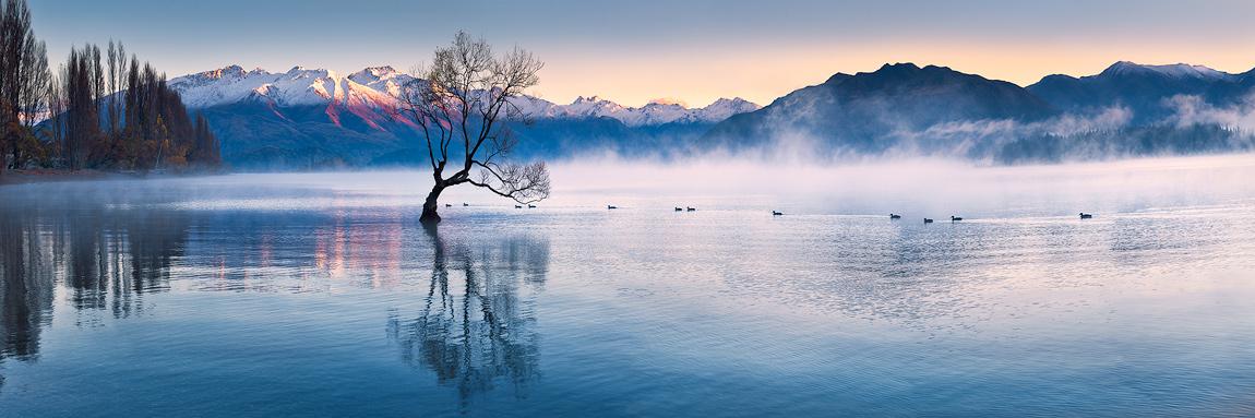 Wanaka South Island New Zealand